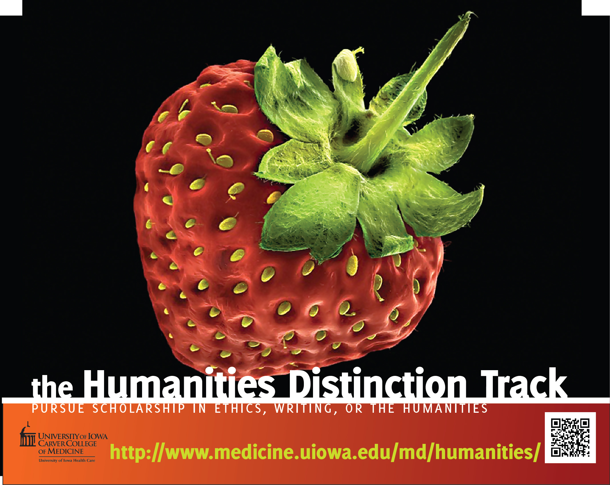 The Humanities Distinction Track