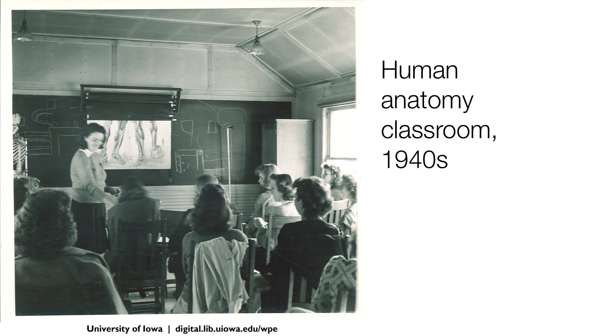 Human anatomy classroom, 1940s